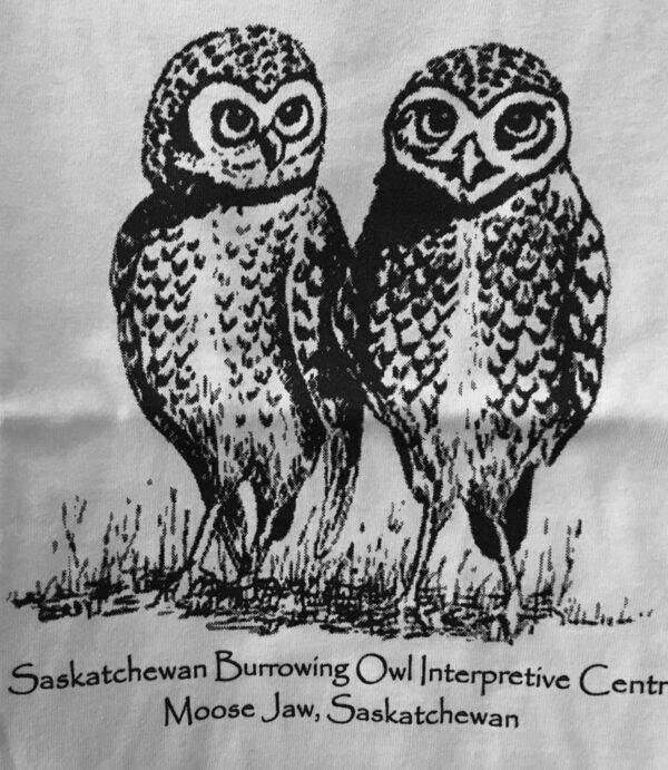 Double Owl Logo Design